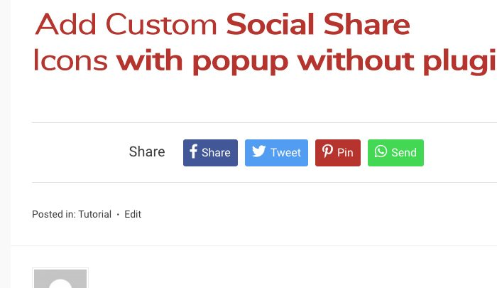 Custom Social Share icons with popup WordPress